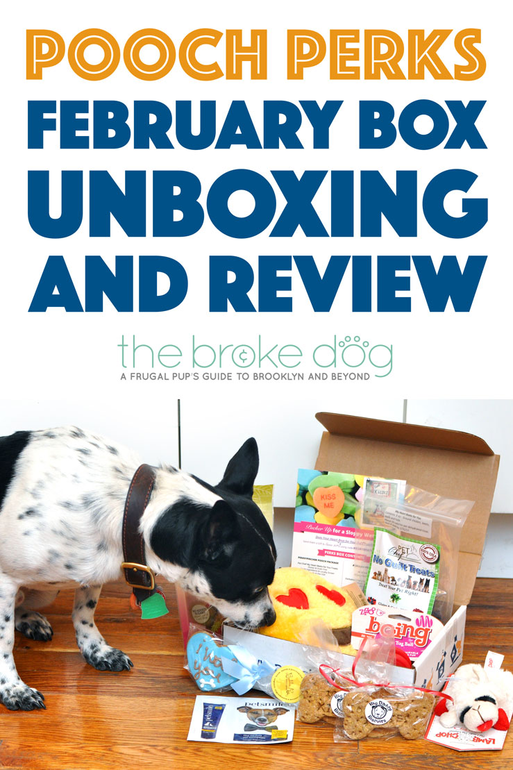 The Broke Dog: Pooch Perks February 2016 Unboxing and Review