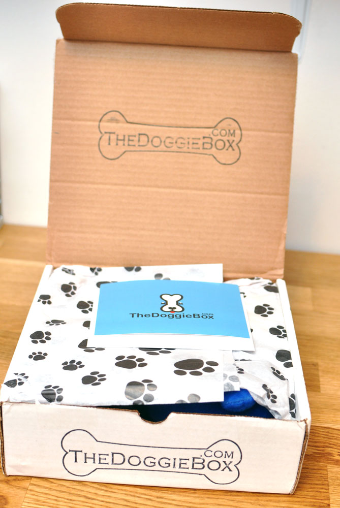 the-doggie-box-dot-com-7