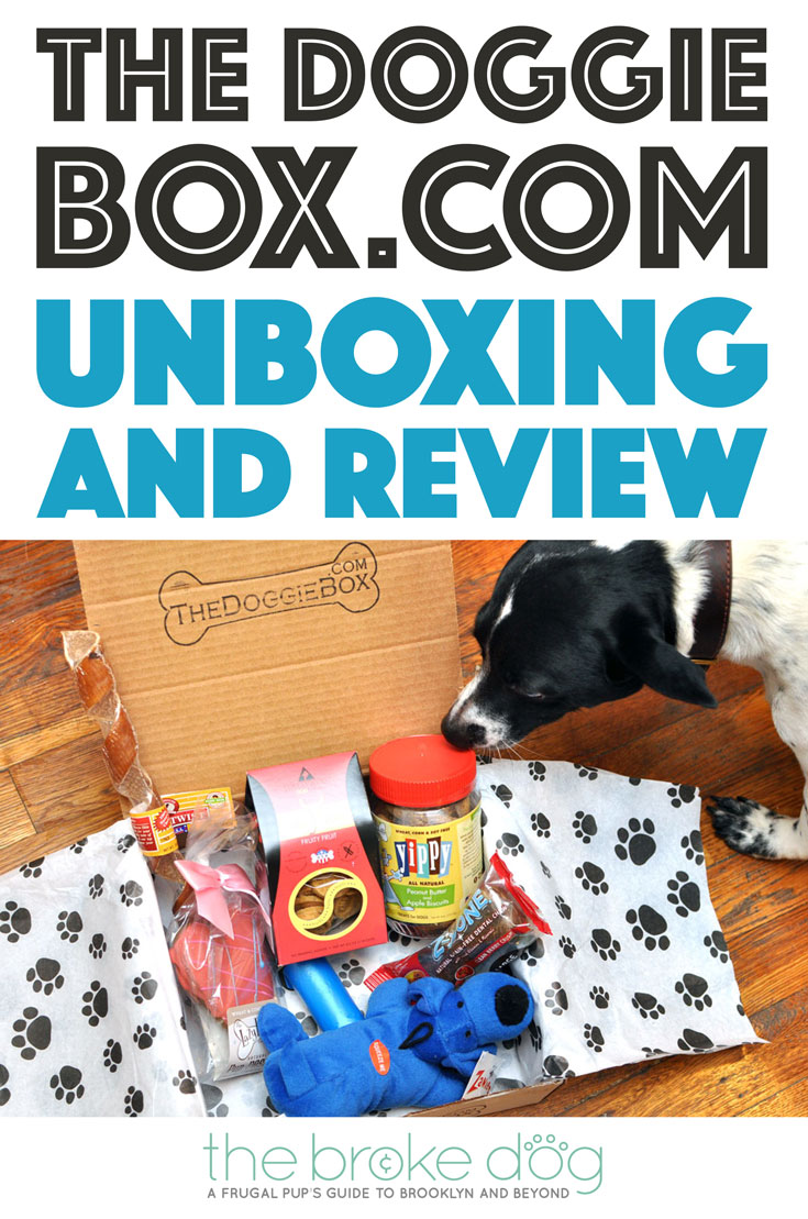 the-doggie-box-dot-com-pinterest