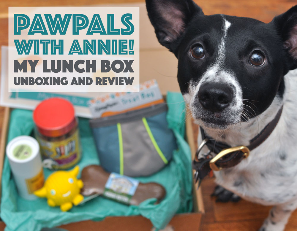 """PawPals With Annie!'s May 2016 """"My Lunch Box"""" Box came with lots of goodies! Read to learn more!"""