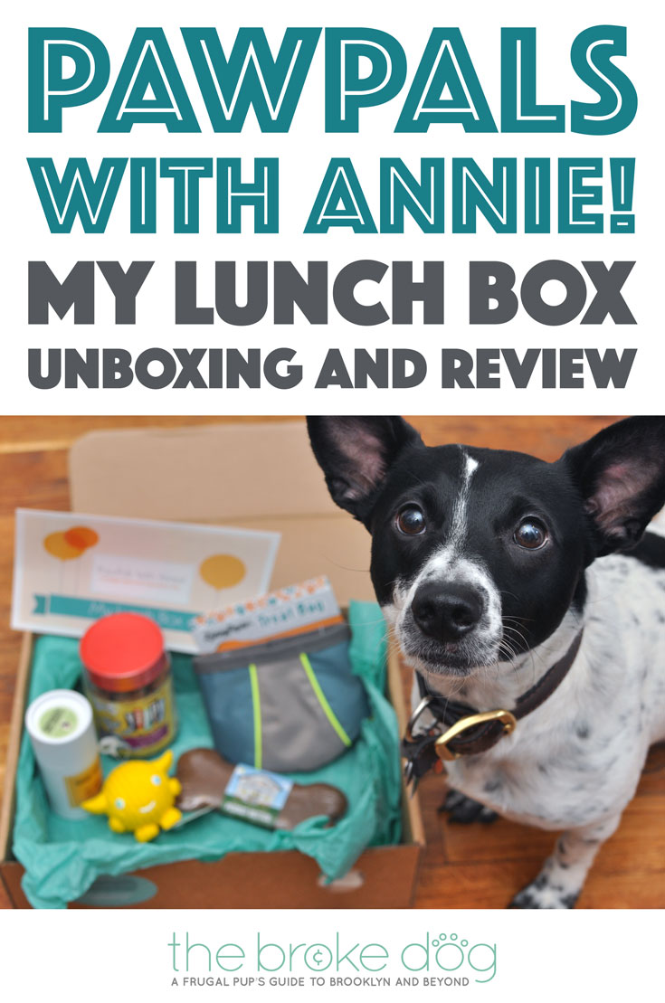 "PawPals With Annie!'s May 2016 ""My Lunch Box"" Box came with lots of goodies! Read to learn more!"