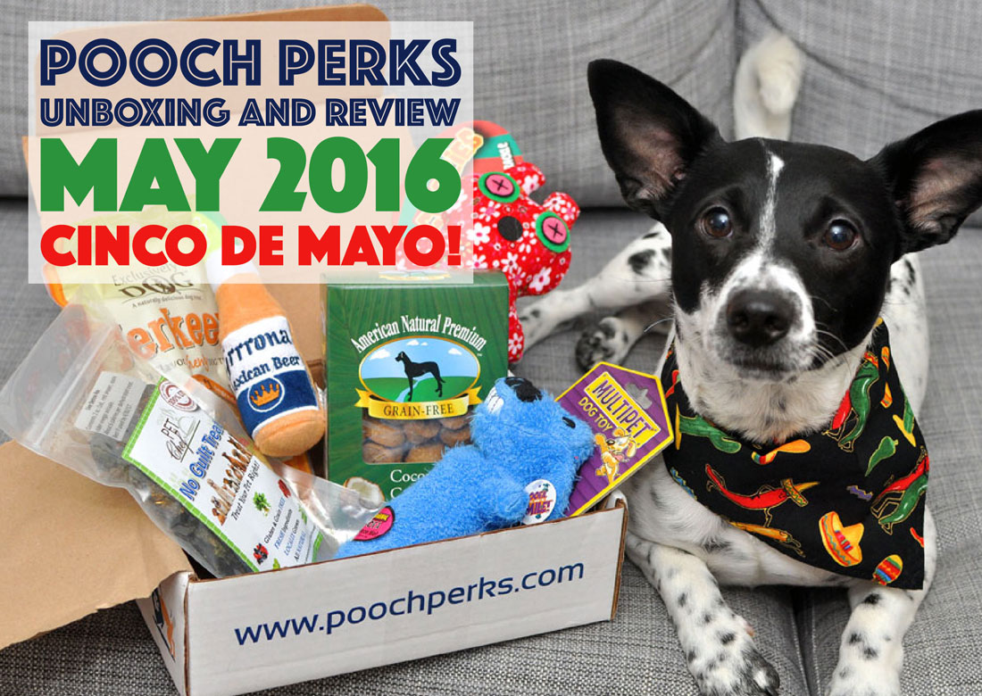 Pooch Perks starts the fiesta with the May 2016 Cinco De Mayo box! Check out our post for the full run-down and exclusive discount!