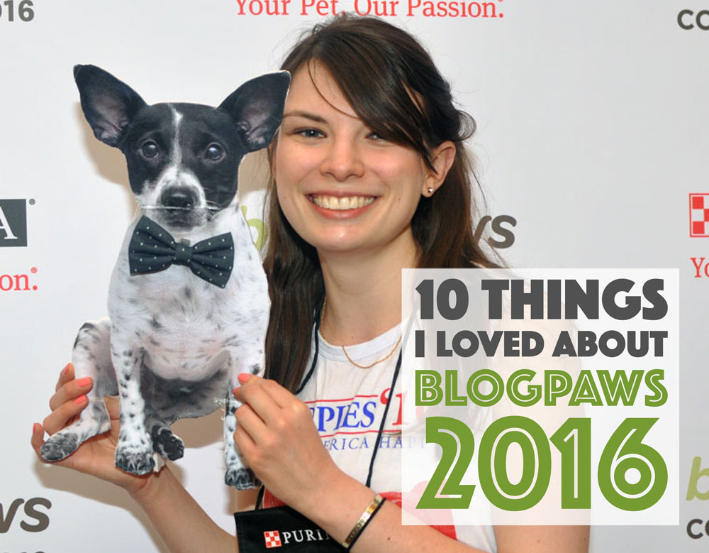 The 10 things I loved most about the BlogPaws 2016 Conference!