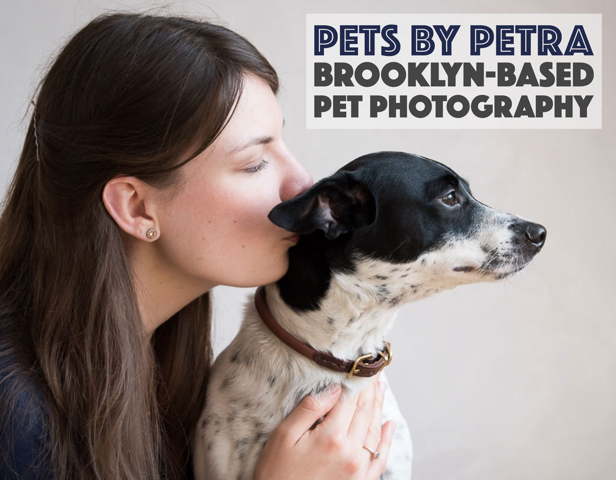 Looking for a pet photographer in the Brooklyn area? Look no further! Petra Romano of Pets by Petra