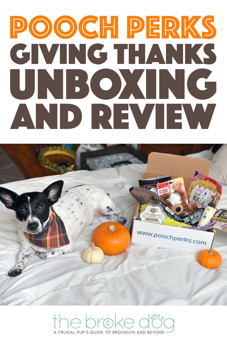 It's November, which means turkey, pumpkin pie, sweet potatoes with marshmallows on top, and giving thanks. It also means another Pooch Perks unboxing!
