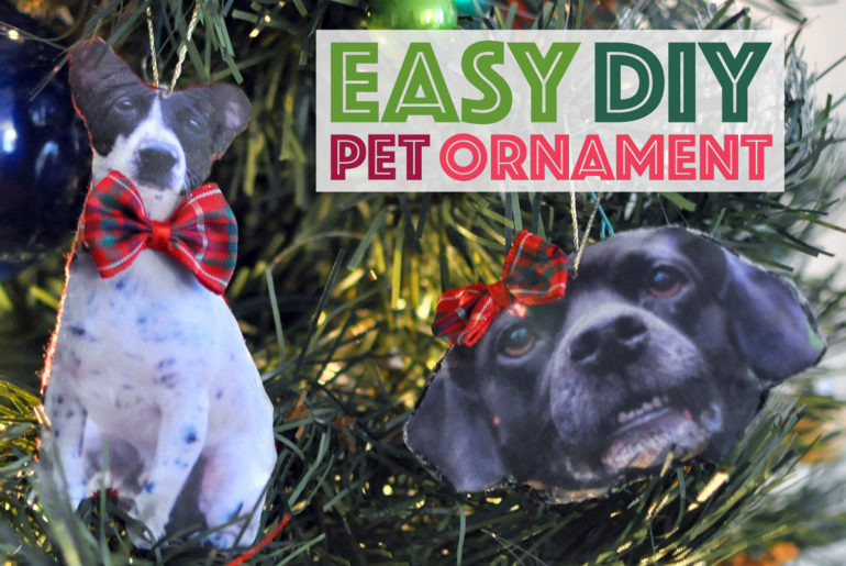 With only a few simple materials, you can make a fully-custom DIY pet ornament that you'll cherish for years to come.