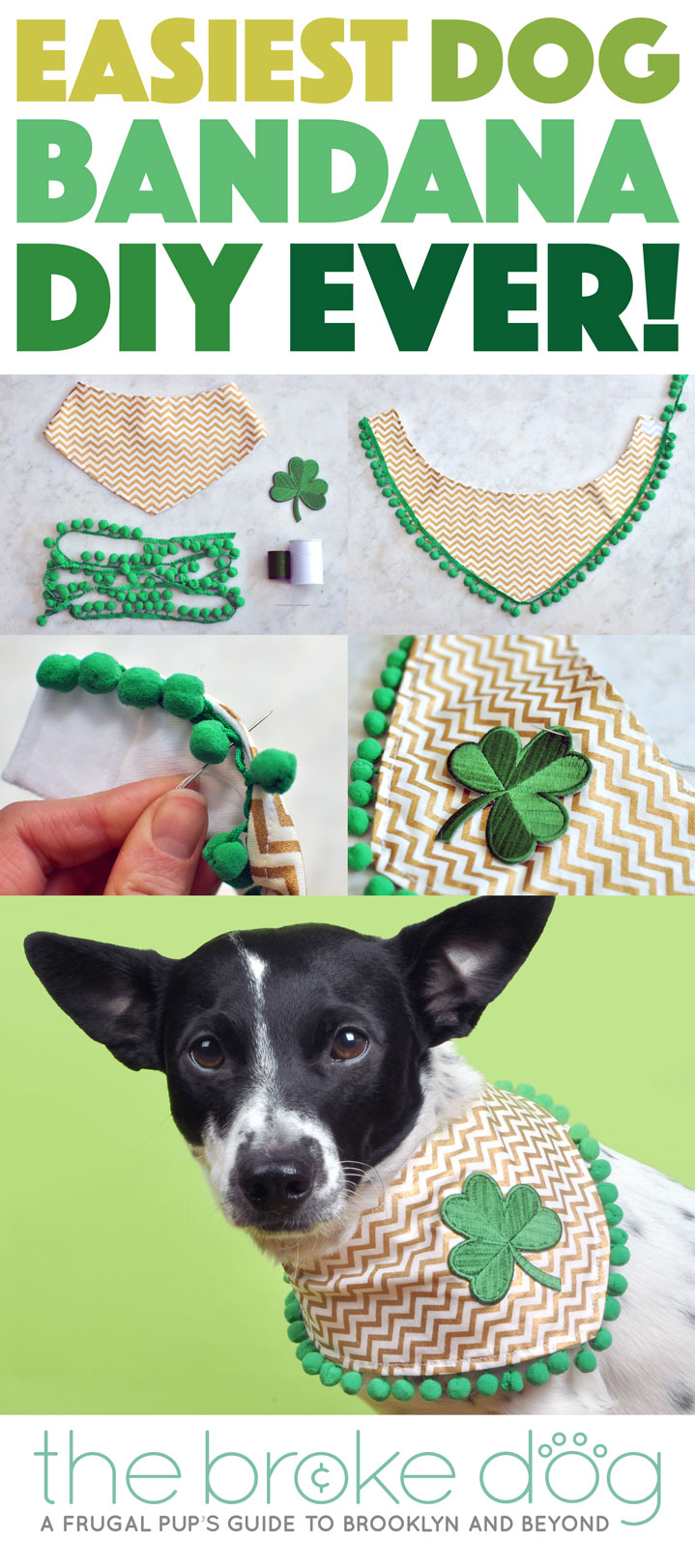This dog bandana may look fancy, but I promise you that this DIY tutorial is probably the easiest dog bandana DIY you'll find! You don't even have to sew if you don't want to! All you need is a few simple materials and a little creativity to make your pup stand out at any event or for any holiday.