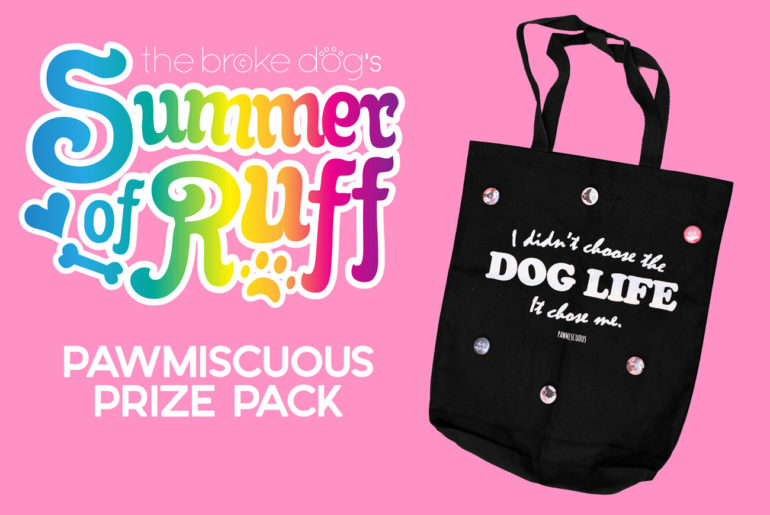 As part of our Summer of Ruff giveaway series, we're giving away a Pawmiscuous Prize Pack this week! The prize pack includes a tote provided by Pawmiscuous as well as a pack of six buttons provided by The Broke Dog.