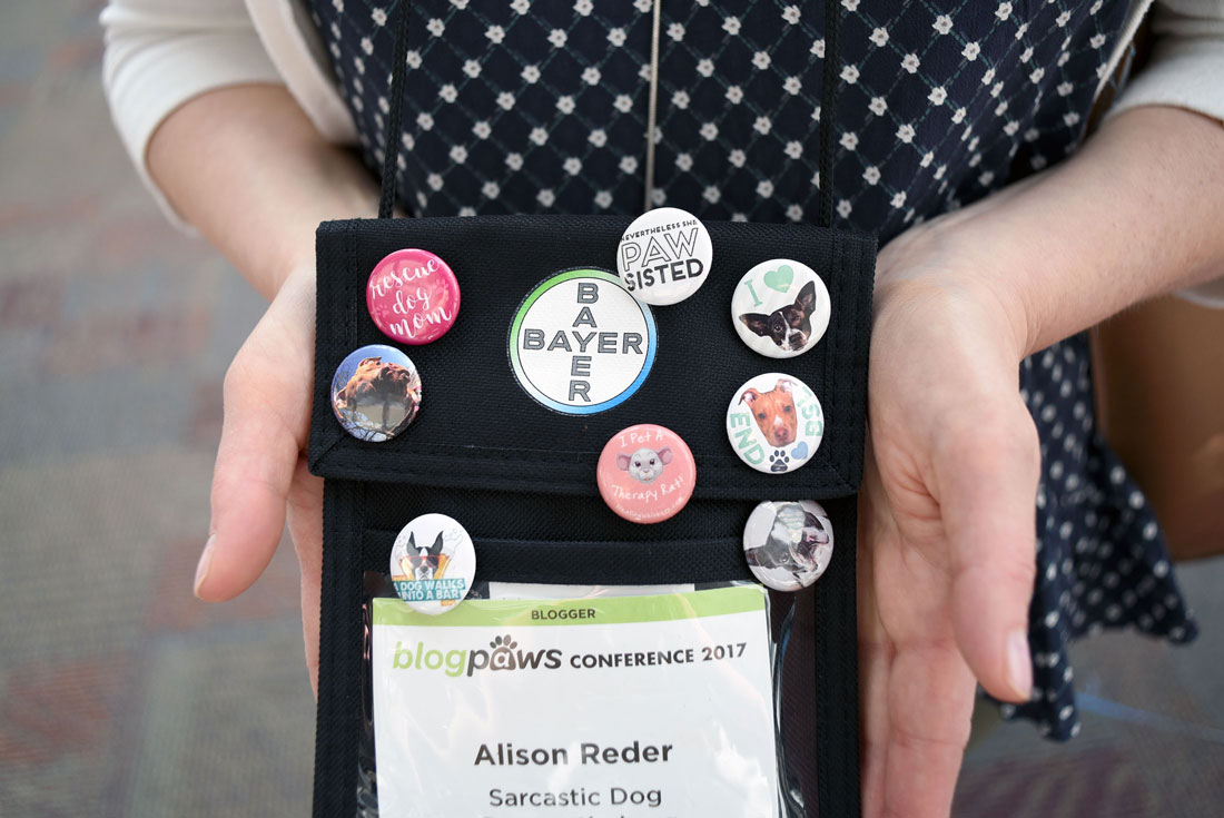 Thinking about attending BlogPaws? This year's conference was my second time at the rodeo, and I've learned a few things along the way. Whether you're a newbie or seasoned veteran, check out my 11 Top Tips for BlogPaws Attendees!