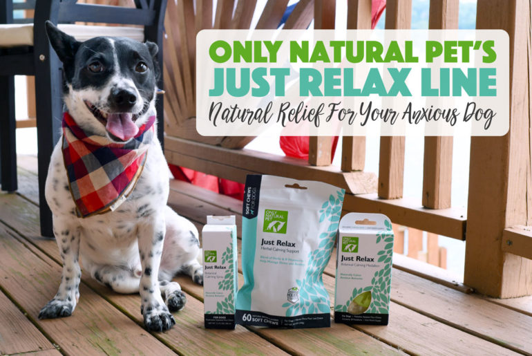 "If you know Henry, you know that he's an anxious pup. Subway rides, loud noises, and other dogs can send him into a barky, reactive anxiety tizzy. We've loved Only Natural Pet products for a long time, so I knew I had to test their ""Just Relax"" line: three natural calming aids for dogs. We put the Just Relax Calming Soft Chews, Just Relax Calming Spray, and Just Relax Calming Medallion to work for perhaps the toughest of all: fireworks on the lake!"