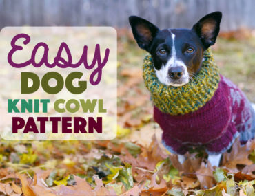 It's getting COLD outside! I don't know about your pup, but my Henry loves to wear this cozy cowl. It's superquickand easy to knit — it only took me an afternoon. Grab your needles, some yarn, and your dog and cozy up!