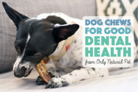 Learn about one of our favorite all-natural, fun ways to clean Henry's chompers: natural dog chews for good dental health!
