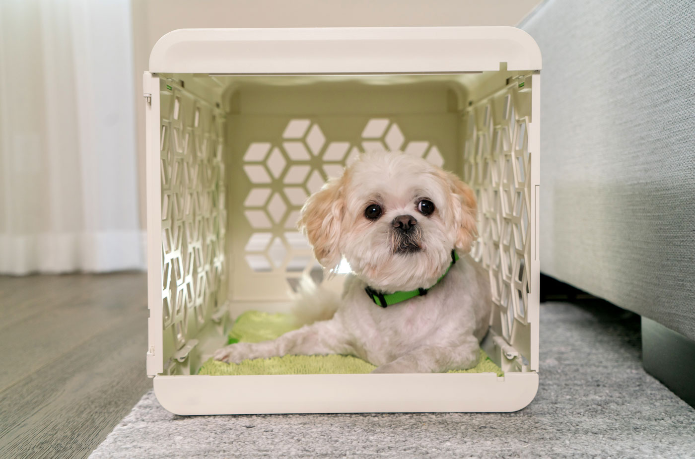 Amy Kim ofChasing Monkeyhad one goal when she launched PAWD: to create a premium, stylish dog crate that is also affordable. She succeeded! This crate is functional, gorgeous, and portable with a target price well under $100. Want to learn more? Check out our interview with Amy and enter to win one of your own!