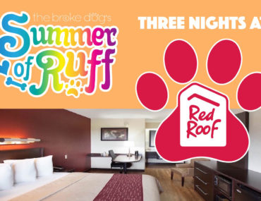 Think that finding a dog-friendly hotel is both difficult and expensive? Think again! Red Roof Inn offers affordableaccommodation with no pet fee!