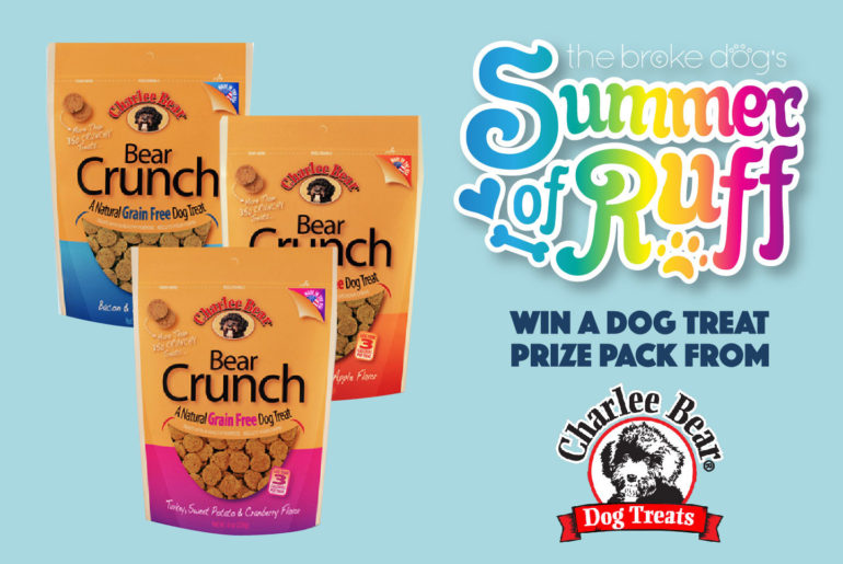 Does your dog love treats? I know, I know — that's a pretty dumb question! I'm almost positive that your pup will love this week's giveaway from Charlee Bear: you could win a dog treat prize pack!