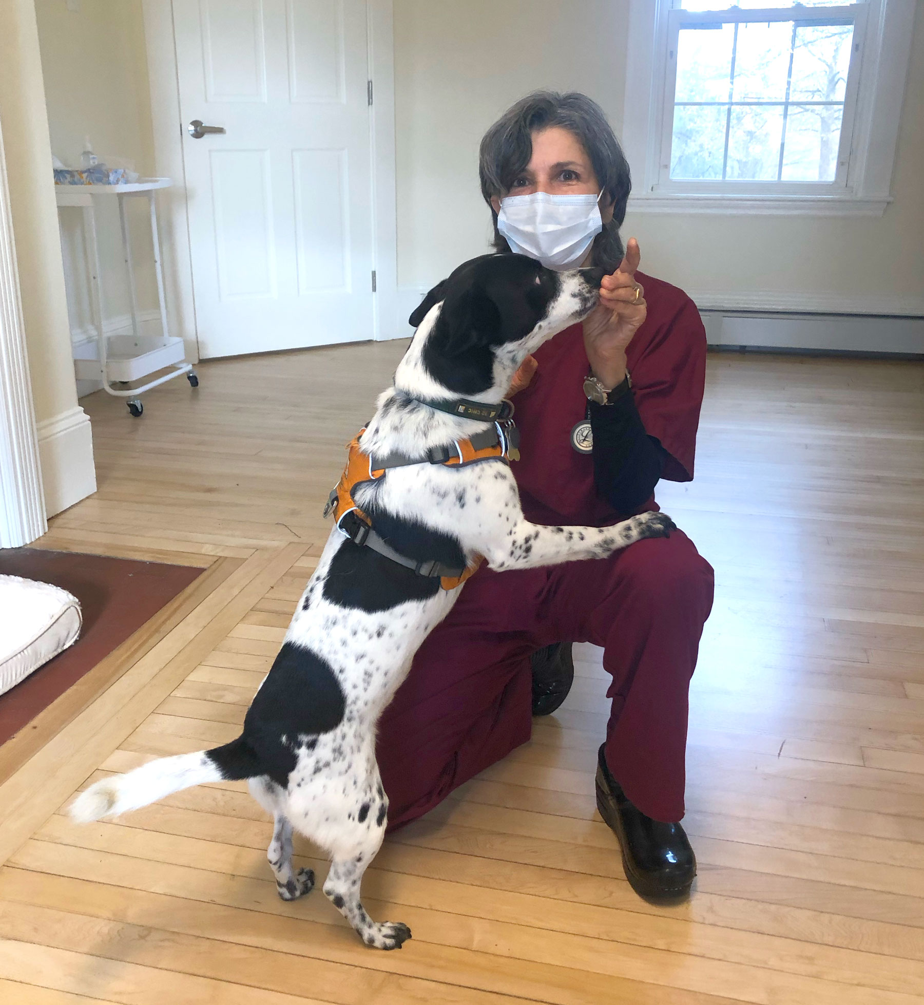 Dr. Borns-Weil and Henry